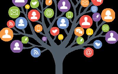 Ghid de Supraviețuire Online – Opinii si recomandari ale membrilor IAB Romania (3)